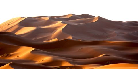 morning_moroccan_desert_dune