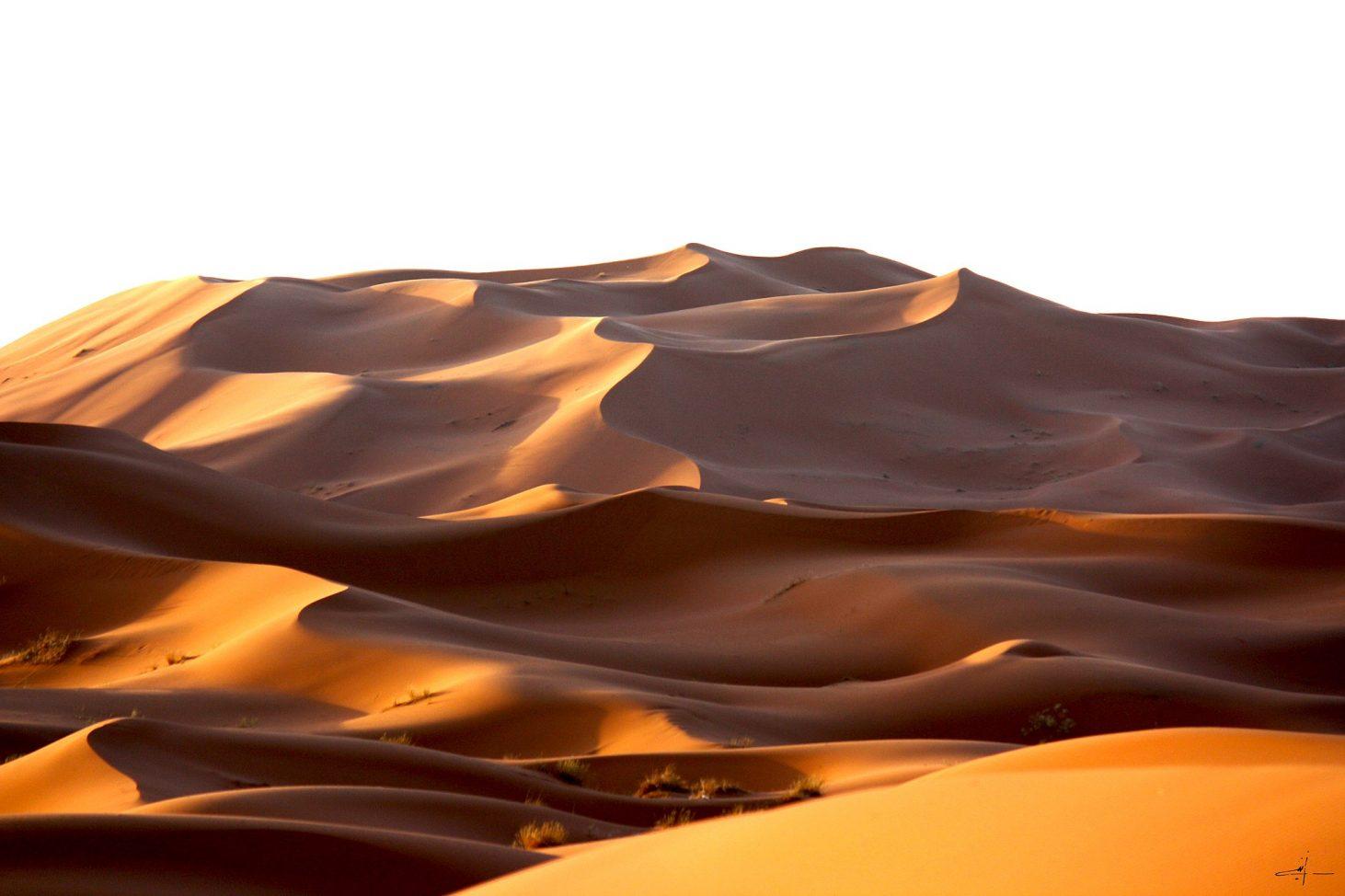 morning_moroccan_desert_dune