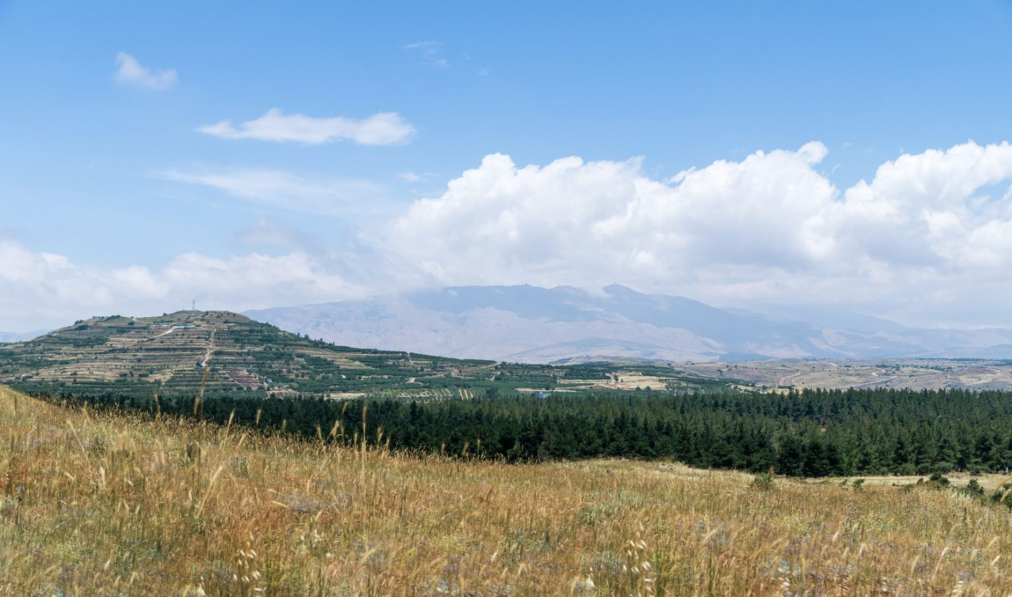 A view of the nature on the Golan Heights and mountain Hermon in Israel.