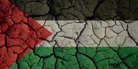 Palestine flag illustration